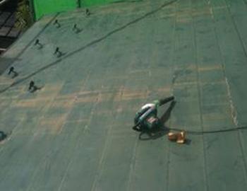 屋根(ブロワ清掃)