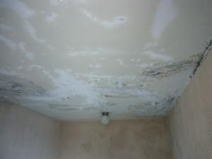 共用廊下天井