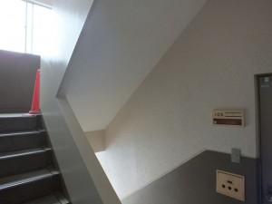 共用廊下塗装完了
